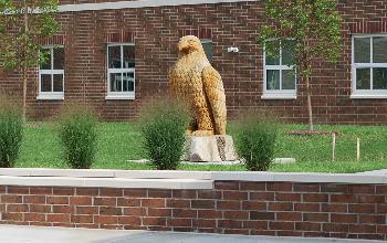 eagle in courtyard