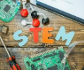 Stem at Maple