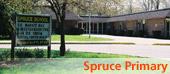 spruce primary