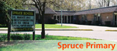 spruce2.jpg image